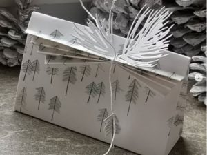 Box mit Plissee